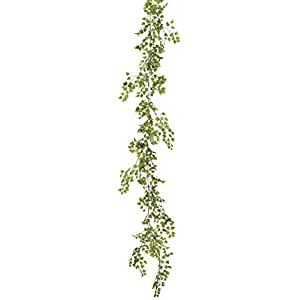 Bloom Room 6' Maidenhair Fern Garland - Excellent Home Decor - Indoor & Outdoor 100