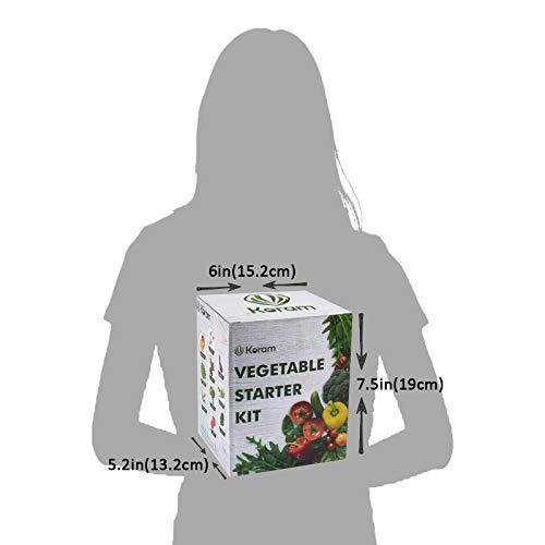 KORAM Vegetable Garden Starter Kit - 10 Organic Salad Seeds Organic Growing Kit DIY Gardening Starter Set with Everything a Gardener Needs for Growing Tomatoes Peppers Broccoli Cucumber Beets Kale by KORAM (Image #6)