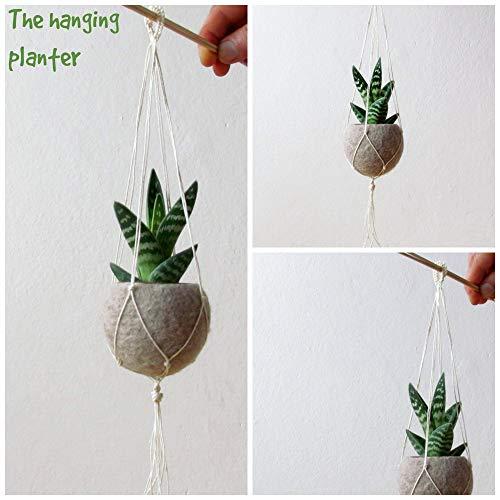 Hanging planter/Macrame plant hanger/Beige Felt planter/air plant vase/modern home decor/CHOOSE YOUR COLOR 2
