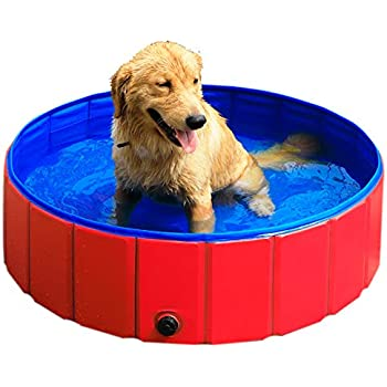 Amazon Com Jasonwell Foldable Dog Pet Bath Pool