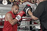 Title Boxing Aerovent Excel Incredi-Mitts 2.0