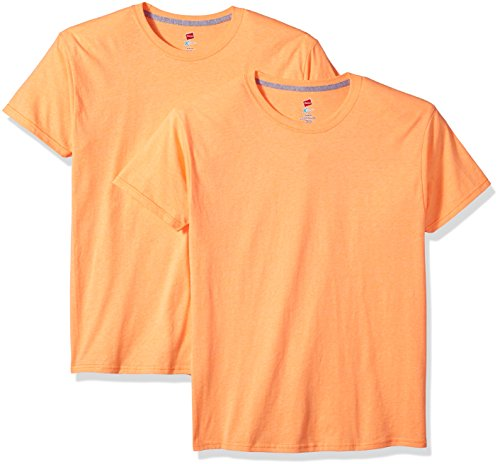 Hanes Men's 2 Pack X-Temp Performance T-Shirt