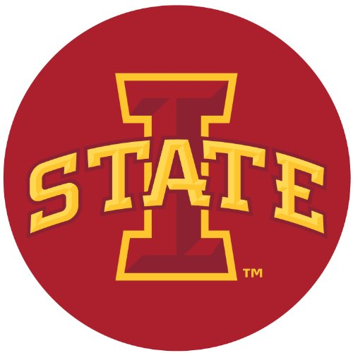 R and R Imports Iowa State Cyclones 10 Inch Round Magnet ()