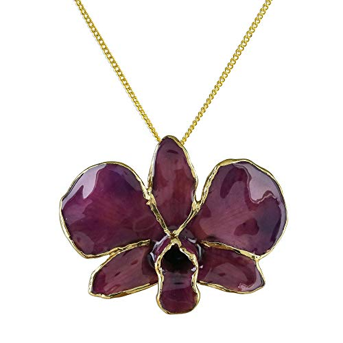 (NOVICA 24k Gold Plated Natural Orchid Pendant Necklace, 18