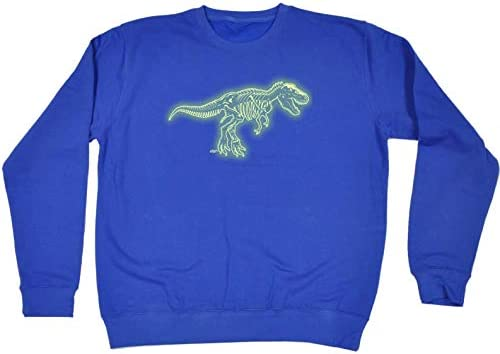 Funny Kids Childrens Hoodie Hoody Trex Bones Dnosaur Glow In The Dark