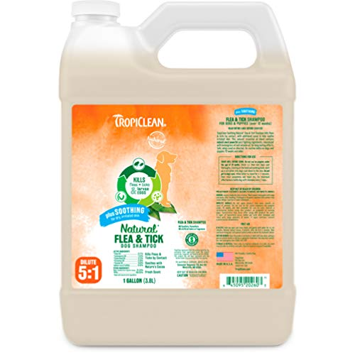 TropiClean Flea and Tick Soothing Shampoo for Dogs, 1 gal, Made in USA (The Best Flea Shampoo For Dogs)