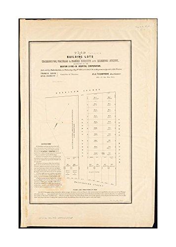 1856 Map Boston Plan of building lots on Washington, Waltham & Parker Streets & Harrison Avenue, belonging to Boston Lying-In Hospital Corporation: to be sold by public auction, on - Boston Street Washington Map