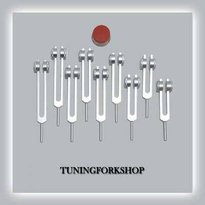 9 Pc Solfeggio Weighted Tuning fork set for Healing with Activator,Pouch & Free shipping by Tuningforkshop (Image #1)