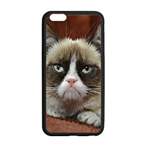 ipod touch4 Case, Grumpy Cat Cute Cool TPU Frame & PC Hard Back Protective Cover Bumper Case for ipod touch4 Inch On 2014