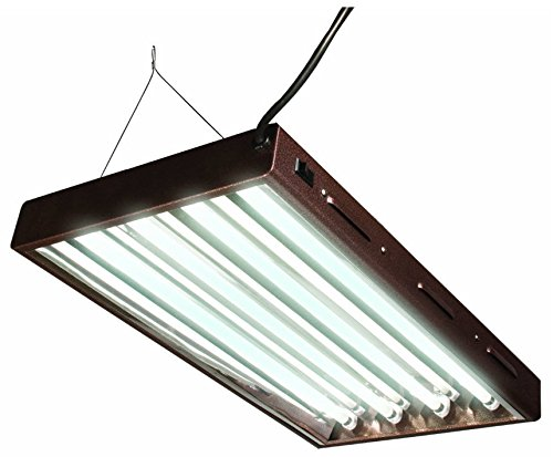 T5 Designer 2Ft 4 Tube Fixture w/ Bulbs -FLP24
