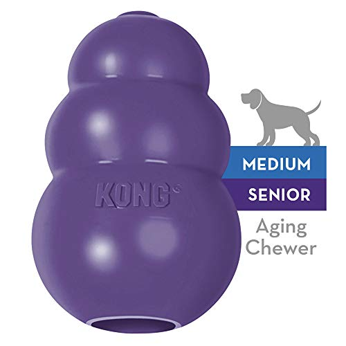 KONG - Senior Dog Toy - Gentle Natural Rubber - Fun to Chew, Chase and Fetch - For Medium Dogs