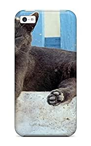 Awesome Design Cats S Hard Case Cover For Iphone 5c