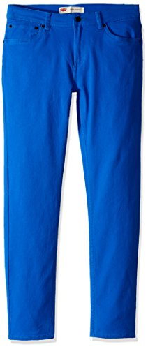 Levi's Big Boys' 510 Skinny Fit Jeans, Princess Blue, 20