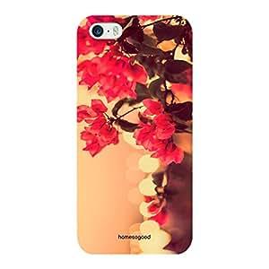 HomeSoGood Vintage Flowers Multicolor 3D Mobile Case For iPhone 5 / 5S (Back Cover)