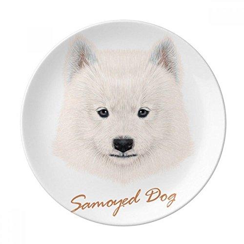 (White Samoyed Dog Pet Animal Dessert Plate Decorative Porcelain 8 inch Dinner Home)