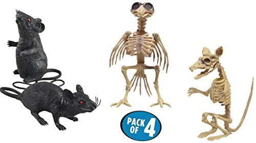 TopNotch Outlet Halloween Skeleton - Plastic Skeleton - Squeaking Rats and Crazy Halloween Skeletons That Don't Always Have to Be Human - Halloween -