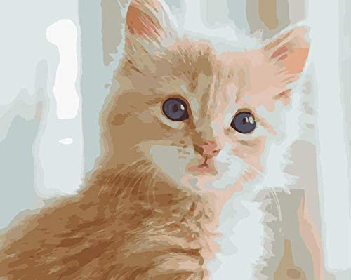 大人用キッズ用デジタルキットによる数字キットによるペイントこれは、誕生日、クリスマスの装飾、結婚式、または新しい滞在のための素晴らしい贈り物です16x20インチ(フレームなし)6092猫猫