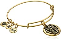Alex and Ani Godspeed Expandable Rafaelian Gold-Tone Bangle Bracelet