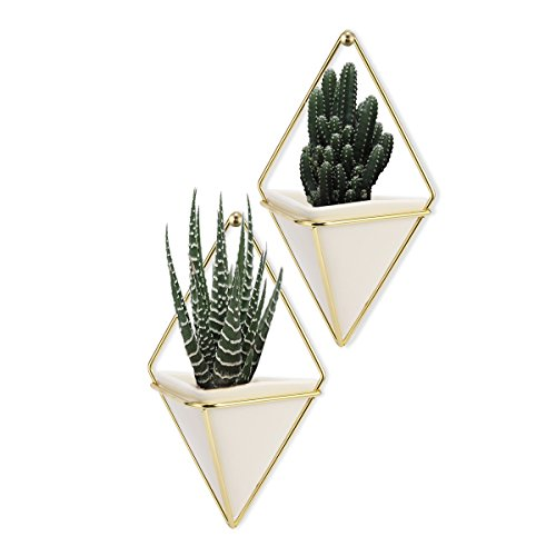 LANMU Hanging Container,Handcrafted Wall Vases,Geometric Wall Decor,Wall Vase Hanging,Plant Holder for Air Plants/Succulent Plants/Artificial Flowers/Mini Cactus/Geometric Plants-2Pack (Geometric Gold Vase)