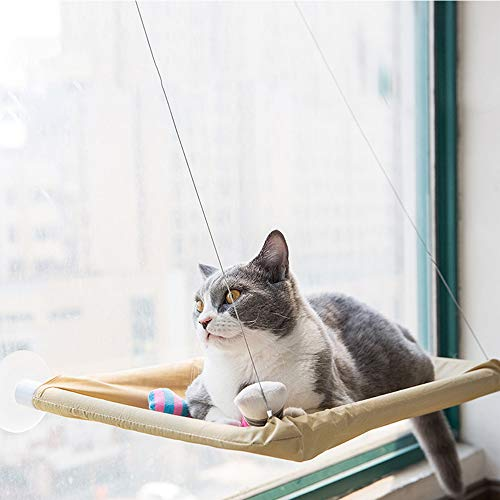 (OthoKing Cat Window Perch, Cat Bed Sunny Seat with Suction Cups Cat Hammock Saving Space All Around 360°Sunbath for Cats)