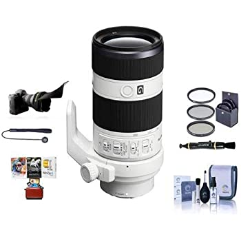 Cleaning Kit Capleash II Lenspen Lens Cleaner Bundle with 67mm Filter Kit PC Software Package Flex Lens Shade Sigma 16mm f//1.4 DC DN Contemporary Lens for Micro Four Thirds Black