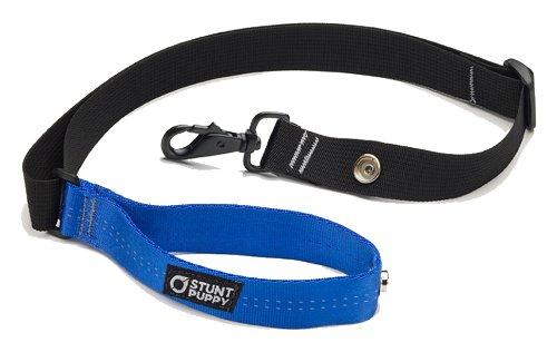 bluee Stunt Puppy Roundabout Dog Leash, bluee