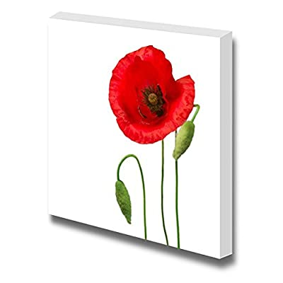 Canvas Prints Wall Art - Poppy Flower Against White Background | Modern Wall Decor/Home Art Stretched Gallery Wraps Giclee Print & Wood Framed. Ready to Hang - 12