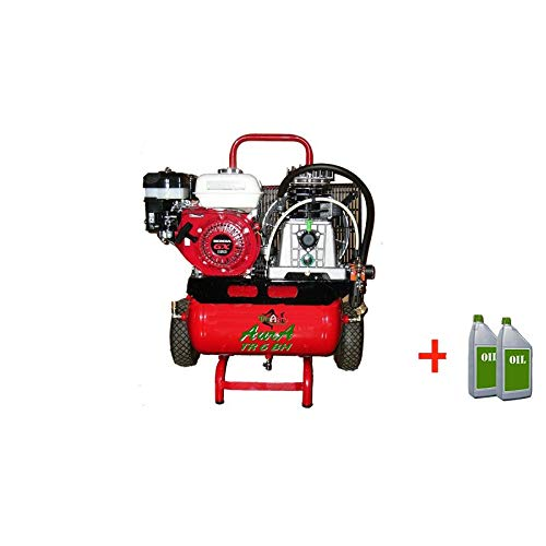TrinAgria Compresor Aura TR 6 BH Motor Honda: Amazon.es: Jardín