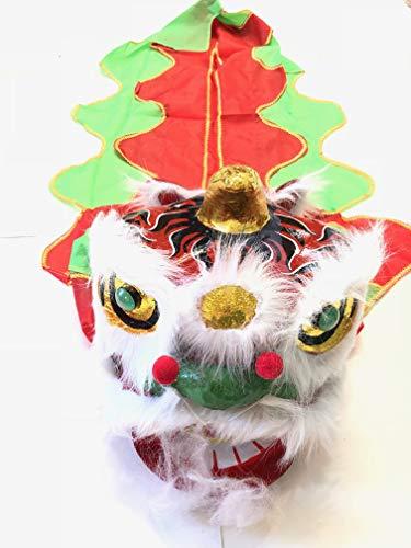 Chinese New Year Lion Dragon Head Dance 13
