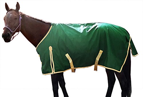Denier Blanket Turnout (Derby Originals Deluxe 600D Nylon Turnout Winter Blanket- Horse and Pony Sizes, Hunter Green, 72