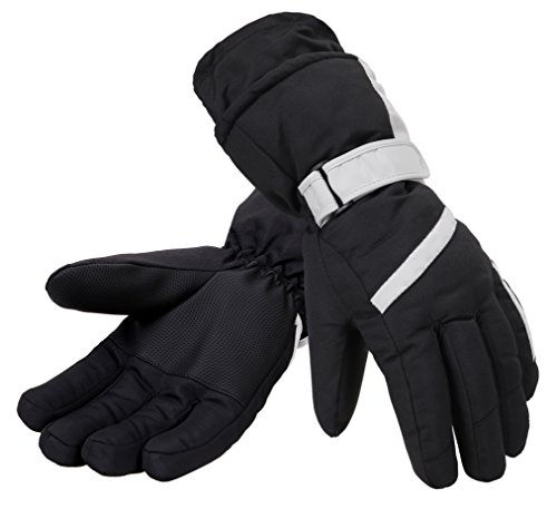[Simplicity Women's Waterproof 3M Thinsulate Sonwboard Ski Winter Gloves, Silver] (Ice Skating Costume Ideas)