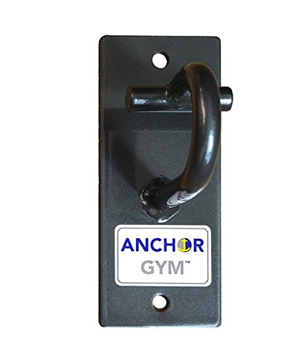 Core Energy Fitness Anchor Gym H1 - Wall or Ceiling Mounted Single Hammer Head Hook for Exercise Bands, Suspension Straps, Heavy Ropes