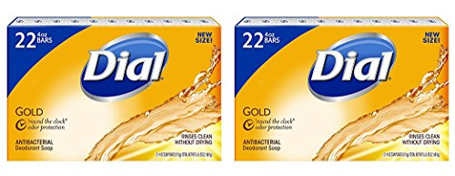 Dial Antibacterial Deodorant Gold Bar Soap, 4 Ounce (Pack of 44) (4 Ounce Soap Eco)