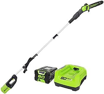 GreenWorks Pro 80V 10