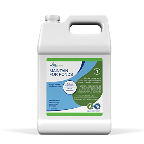 Water Treatment Koi - Aquascape MAINTAIN Water Treatment for Koi and Fish Ponds, Easy To Use, Powerful Blend of Beneficial Bacteria, Phosphate Binder, Flocculent, and Detoxifier, 1 gallon/3.78 L   96060
