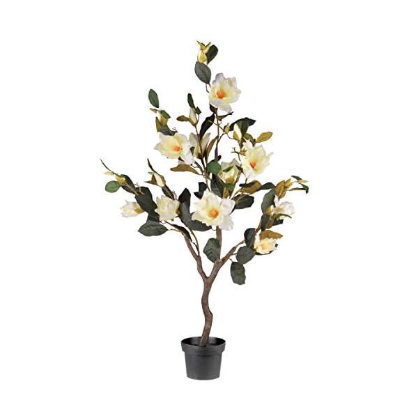 National Tree 48″ Magnolia Tree