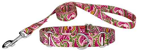 Country Brook DesignPink Paisley Martingale Dog Collar & Leash - Small