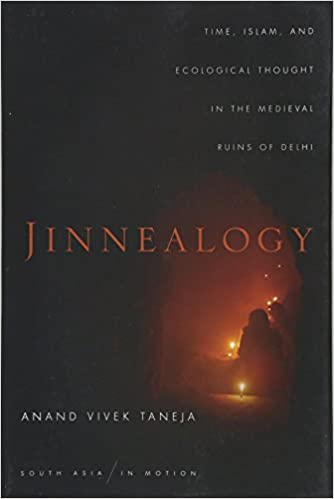 Jinnealogy: Time, Islam, and Ecological Thought in the Medieval Ruins of Delhi (South Asia in Motion)