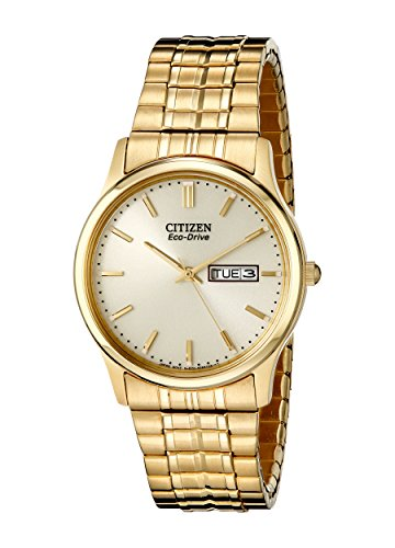 (Citizen Men's Eco-Drive Expansion Band Watch with Day/Date, BM8452-99P)