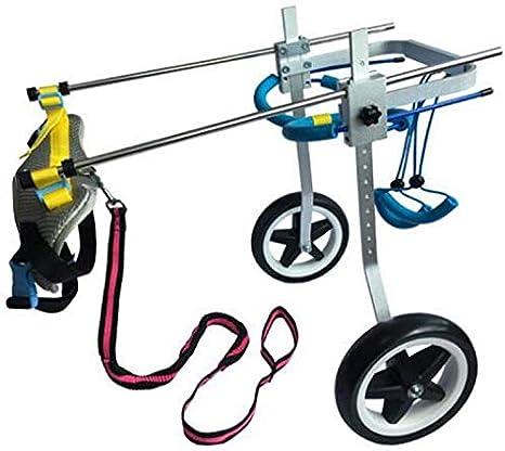 Azyq Bicicletas para mascotas, sillas de ruedas para perros ...