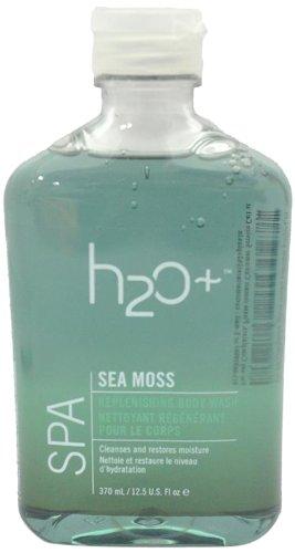 H2O Plus морской мох Пополнение Body Wash-12,5 унций.