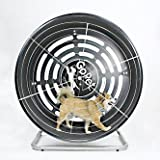 GoPet Treadwheel ToySmall (