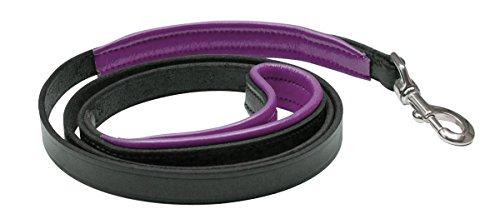 Perri's Leather Black with Purple Padded Leather Dog Leash, 5-Feet
