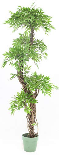 Vogue Plants Eastern Style Topiary Tree, Lifelike Artificial Leaves with Real Bark Approx 6 feet Tall