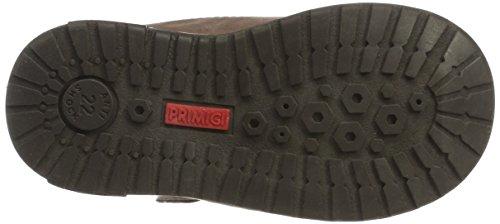 Marron Primigi 8059 taupe Fille Pca Basses Sneakers Bébé wgS6vqRg