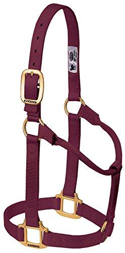 - Weaver Leather Original Non-Adjustable Nylon Horse Halter, Average, Burgundy