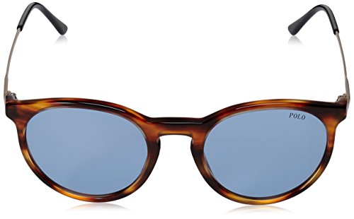 Stripped Marron Polo PH4096 Azure Havana Sonnenbrille YRY8q7w