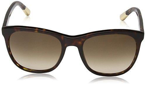 Escada - Lunette de soleil SES349 Wayfarer  - Femme Shiny brown havana frame / brown gradient lens