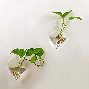 Beautiful AWEVILIA Wall Hanging Plants Planter Terrariums Glass Diamond Shape Vase  Creative Fashion Home Decor Wall Plants Design Ideas