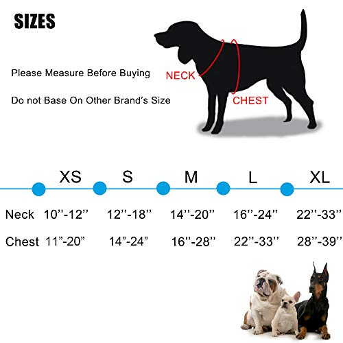 Buy harness for large dogs